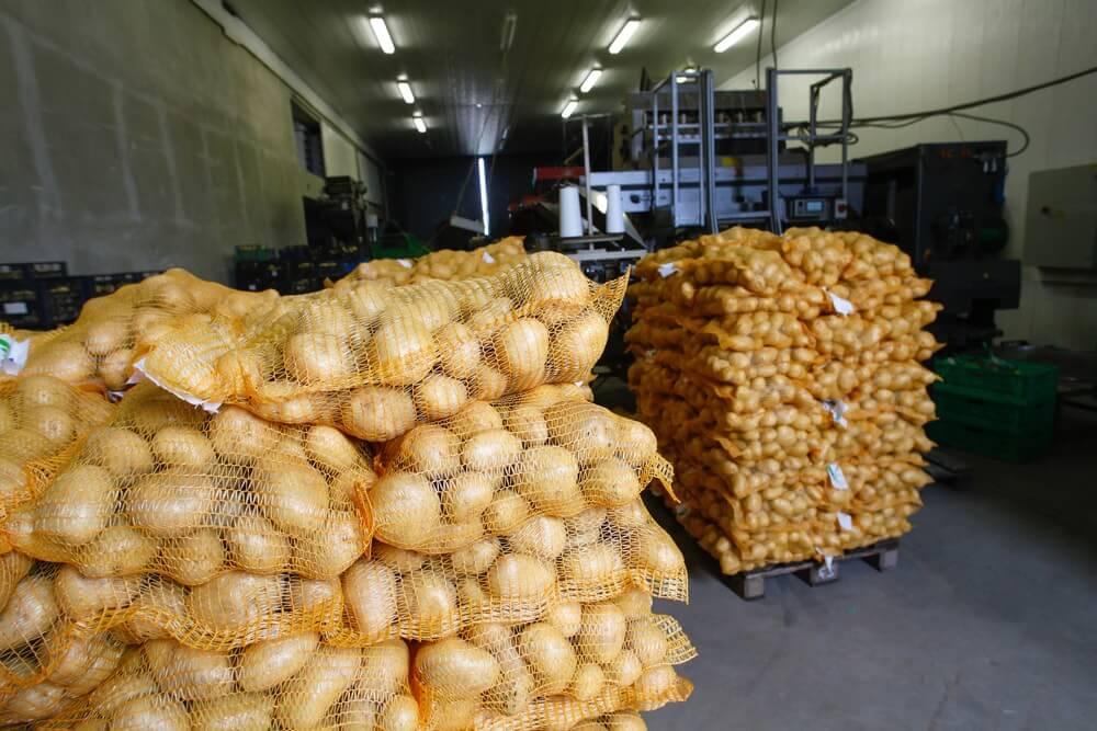 Potato transport